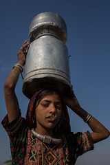 Dhaneta Jat tribe girl carrying water containers on the head in great rann of kutch (anthony pappone photography) Tags: travel girls india colors silver colours handmade muslim earring piercing ring rings tribes asie nosering cloth ethnic indi indien nomads indi yat islamic gujarat inde ethnology azi nomadic indland noserings kutch bhuj  jat etnic greatrannofkutch indija  etnia handembroidered ethnie carryingwater womancarrying dhanetajat dhaneta   jattpeople jatttribe earringnose earringjatjat jattribe desertkutch kutchtribes anthropologye dhanetajattribe ahirtribe