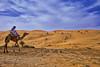 www.durmaplay.com_oyun_wallpaper_15361.jpg (http://www.durmaplay.com) Tags: sky cloud texture sahara landscape sand waves pattern desert dunes camel ripples camels riyadh saudiarabia hdr canonefs1855 canonef70200mmf4lusm canon400d canonef1635mmf28liiusm canoneos5dmarkii canonefs18200mmf3556is tariqm tariqalmutlaq kingofdesert wwwdurmaplaycom
