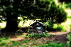 Disproportional (LeWelsch Photo) Tags: grass switzerland miniature cabin forrest bokeh chalet bern tiltshift gurten disproportional lewelsch rx100m3 rx100iii weare500px mttelirain