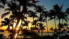 Maui, Kaanapali Sunset (gerard eder) Tags: world travel reise viajes america usa united states unitedstates hawaii pacific pacificocean tropical exotic islands maui kaanapali beach outdoor sunset sonnenuntergang strand playa nature natur landscape landschaft paisajes