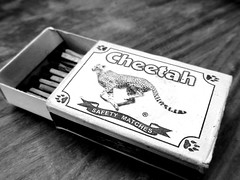cheetah b&w (Jackal1) Tags: old bw lumix words kenya african panasonic cheetah matches matchbox