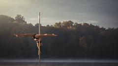 (dimitryroulland) Tags: morning light people sun art dance nikon natural 85mm dancer pole flex 18 performer flexibility flexible d600 dimitry roulland