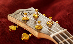 It's a wind up (Keith Williamson) Tags: detail gold ukulele chinese snail tuners craftsmen