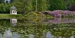 Theekoepel van 'Het Oude Loo' (henkmulder887) Tags: nature landscape natur natuur natura blume teich rhodes bloemen apeldoorn landschap vijver rhododendrons theekoepel paleishetloo hetoudeloo beeldenvijver