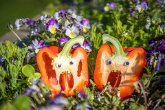 Garden monsters (Richard Larssen) Tags: flowers food nature norway norge sony norwegen vegetable 55mm richard scandinavia paprika rogaland a7ii larssen richardlarssen sel5518z