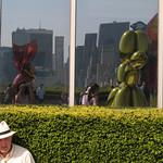 "Reflexo por Érica Modesto <a style=""margin-left:10px; font-size:0.8em;"" href=""http://www.flickr.com/photos/17570773@N08/6795654574/"" target=""_blank"">@flickr</a>"