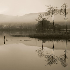 l    lll  Misty Loch Ard (kenny barker) Tags: winter mist reflection water fog sepia landscape lumix scotland day loch trossachs lochard kinlochard alwaysexc landscapeuk panasoniclumixgf1 welcomeuk kennybarker
