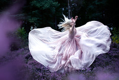 Wonderland  'While Nightingales wept' (Kirsty Mitchell) Tags: pink fairytale twilight purple heather dream fantasy wonderland enchanted kirstymitchell elbievaneeden wonderlandpartii