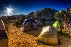 Joshua Tree Sunrise (/\ltus) Tags: california sunrise pentax joshuatree handheld southerncalifornia hdr k7 5xp