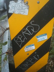 raine berds aybid synd urbn (I $ee Hot Wings!) Tags: graffiti bay north tags area graff raine urbn synd berds aybid