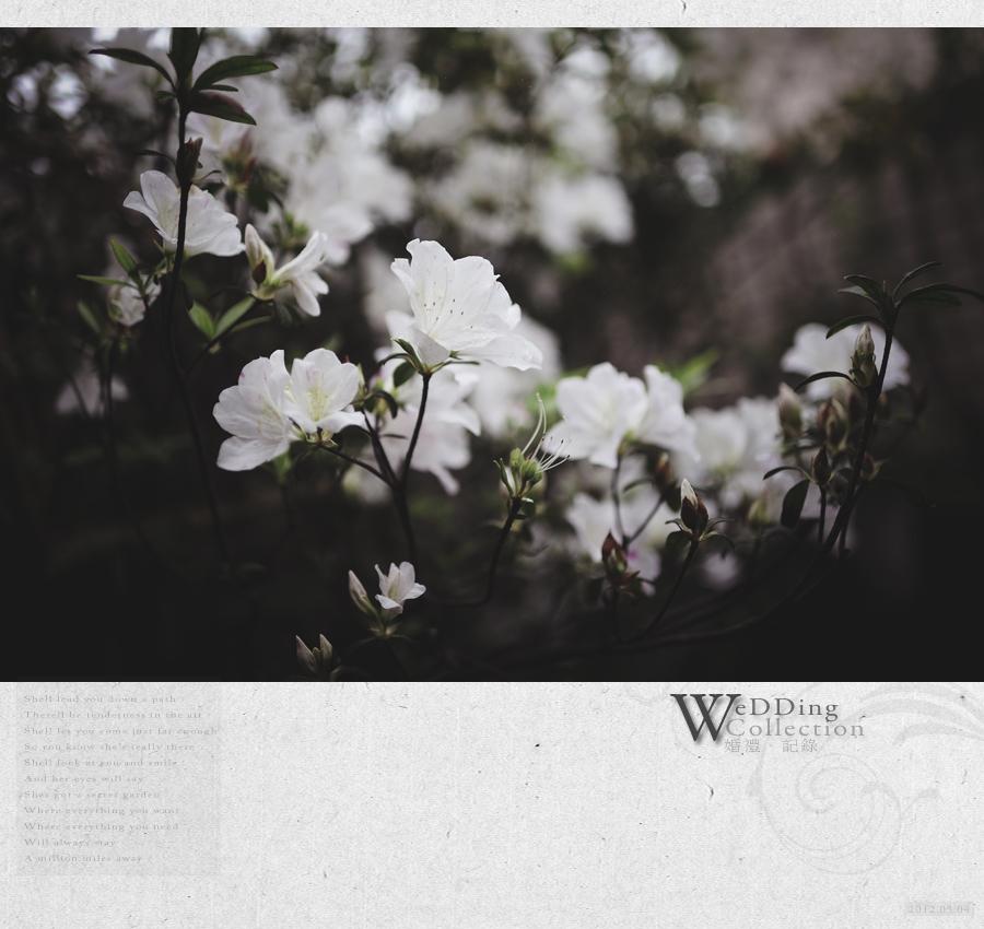 20120304bookcover