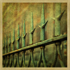 Picket fences 2 (osolev) Tags: italy metal photoshop square europa europe italia fences lucca ps tuscany frame toscana sq italie textured valla cs4 forjado cuadrada osolev