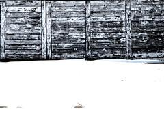 Winter Sea Palisade Texture (Claudio Cantonetti) Tags: ocean winter sunset sea summer italy brown sun white snow black cold rome texture tourism ice beach nature beautiful weather fence season landscape coast sand december day pattern open natural wind background horizon scenic sunny scene coastal shore coastline hoard idyllic lazio fregene