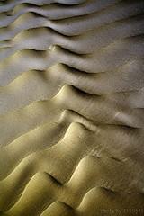 Sandy Abstraction (TARIQ-M) Tags: shadow abstract art texture landscape sand waves pattern desert patterns dunes wave abstraction riyadh saudiarabia hdr بر الصحراء canoneos5d الرياض صحراء goldensand رمال رمل طعس كانون المملكةالعربيةالسعودية الرمل خطوط تجريد صحاري ef1635mmf28liiusm canoneos5dmarkii نفود الرمال كثبان براري تموجات تموج الرمالالذهبية نفد ripplesripple