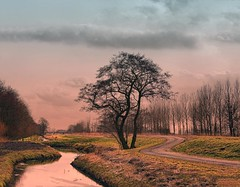 The path around the tree (Wim Koopman) Tags: ditch dyke dike water cycling foot path tree sky clouds landscape bridge holland netherlands dutch goudriaan nikon d90 stock photo stockphoto photography stockphotography wpk