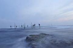 SRI LANKA (BoazImages) Tags: ocean seascape nature weather fog landscape fishing scenery asia fishermen indianocean scenic srilanka stilts stilt tradtion weligama midigama abigfave boazimages