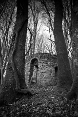 Hidden (markgeorgephotography.co.uk) Tags: wood old trees bw building monochrome forest woodland dark landscape blackwhite ancient woods ghost ruin monotone eerie structure haunted spooky doorway environment ghostly dartmoor canon1740mmf4lusm haunt canon7d