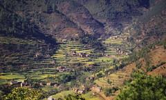 1997 Nepal नेपाल Nepāl // Wanderungen rund um Kathmandu (maerzbecher-Deutschland zu Fuss) Tags: nepal trekking hiking natur 1997 kathmandu himalaya katmandu wandern wanderweg नेपाल maerzbecher nepāl