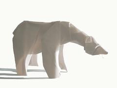 Polar bear (Quentin Trollip) (Danielle Verbeeten) Tags: paper origami polarbear papier quentin ijsbeer vouwen trollip