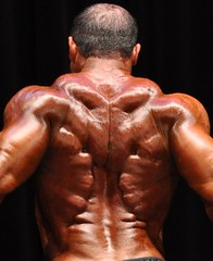 "Kroc's Unreal Back Thickness and Detail • <a style=""font-size:0.8em;"" href=""http://www.flickr.com/photos/77416569@N07/6942786467/"" target=""_blank"">View on Flickr</a>"