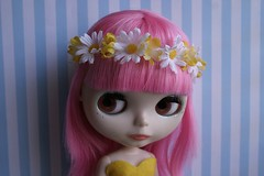 A crown of Daisies 9/52