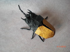 Eupatorus gracilicornis (mrmicawer) Tags: insect origami beetle papel escarabajo papiroflexia insecto coleóptero eupatorus gracilicornis