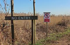 Brandon Marsh, Newlands Reedbed (kestrel49) Tags: uk england europe britain naturereserve gb 12 warwickshire 2012 brandonmarsh brandonmarshes