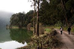 o lago silencioso (Gnusam) Tags: lake reflection green fog lac vert dirt lagoa reflexion brouillard azores aores setecidades