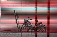 Damenrad mit Krbchen (redstarpictures) Tags: red rot bike bicycle composition basket rad montage fahrrad krbchen damenrad ladiesbike ladiesbikewithbasket damenradmitkrbchen