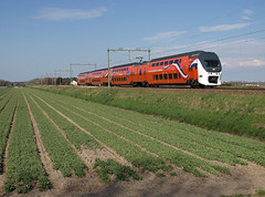 Royal 9520 at Hillegom, April 28, 2013 (cklx) Tags: tulips royaltrain lisse bollenstreek virm hillegom 9520 koningstrein