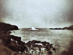 the iceberg (sheila mckinney) Tags: canada newfoundland grunge iceberg drama2 twillingate tiltshift crowhead april2013 iphone4s snapseed uploaded:by=flickrmobile flickriosapp:filter=nofilter