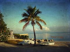 Morning Sun, Montego Bay (Dino Langis) Tags: art beach gallery image textures jamaica museums legacy cityart imagepoetry artdigital trolled awardtree daarklands magicunicornverybest