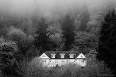 Rutherglen Mansion, Longview, Washington, 2014 (Steve G. Bisig) Tags: blackandwhite usa monochrome fog forest washington unitedstates northwest foggy historic pacificnorthwest northamerica mansion longview rutherglen cowlitzcounty