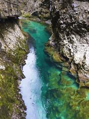 www.hidden-paths.com (fly fishing in Slovenia - HIDDEN PATHS) Tags: green nature fishing adventure flyfishing slovenija hiddenpaths