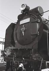 D52 (Yukijiro.) Tags: blackwhite minolta sl 135film d52  8700i kodaktryx400