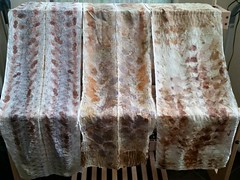 11252173_10204298821770704_5513685995909774228_n (theresaknits) Tags: silk printing scarves dyeing eco