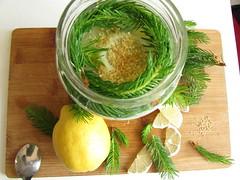 (100% raw) vegan spruce syrup (tarengil) Tags: food white green nature vegan spring lemon raw sweet health vegetarian syrup spruce xylitol