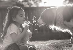 dandy friends (auntneecey) Tags: blackandwhite dog girl monochrome mono dandelion stardust odc whiteandblack