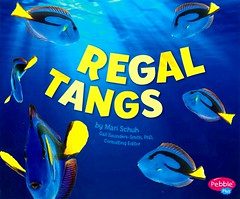 Regal Tangs (Vernon Barford School Library) Tags: new blue school fish yellow reading book high library libraries reads books sealife read paperback cover junior covers bookcover middle reef fishes vernon quick recent dory regal qr grade2 reefs bookcovers nonfiction tang paperbacks coralreef marinelife tangs surgeonfish barford reeffish softcover coralreeffish regaltang quickreads quickread undersealife vernonbarford rl2 softcovers readinglevel pebbleplus regaltangs 9781515717683 9781491460412