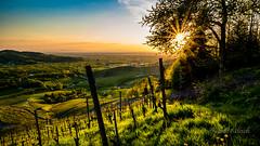 Blackforest Sunset (strack_frank) Tags: sunset wonderful landscape sonnenuntergang outdoor samsung berge landschaft schwarzwald blackforest tal reben wineyards sunstar kappelrodeck sonnenstern nx30 blosenkopf