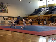 stefanou_15_5_2016_knockdown_10