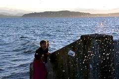Day 176 of 366 (James_Seattle) Tags: ocean seattle desktop wallpaper tourism beach water photo nikon outdoor background july tourist sound alki alkibeach pugetsound puget 2016 seattlewashington 366challenge d7200 nikond7200 july2016