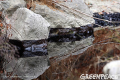 Oil Line On Rocks (Greenpeace USA 2016) Tags: oil spill pipeline fossilfuel ventura california pollution cleanup crude ca usa