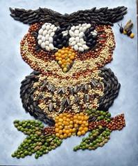 Mosaic Owl (floyfreestyle) Tags: beans mosaic wallart seeds owl kidsart legumes