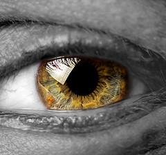 Aperture (O.I.S.) Tags: iris bw brown macro green eye look eos watch observe sw sight grn braun glimpse makro gaze glance auge blick pupil 30d colorkey beobachten pupille raynox schwarzweis colourkey 55250