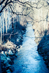 DSC_6418.jpg (Ninjinnin) Tags: blue trees winter cold nature water yellow creek stones crossprocess brush