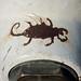 Scorpion Hydrant