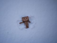 (greenplasticamy) Tags: winter snow lumix japanese robot amazon box mini panasonic cardboard micro 20mm 43 kaiyodo miura yotsuba danbo amazoncojp gf1 mft revoltech hayasaka danboard micro43 microfourthirds minidanboard minidanbo miurahayasaka dmcgf1