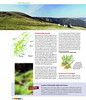 "Magazine du Haut-Rhin n°16 juil-août 2007 • <a style=""font-size:0.8em;"" href=""http://www.flickr.com/photos/30248136@N08/6852869009/"" target=""_blank"">View on Flickr</a>"