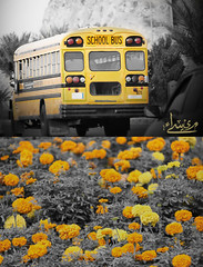 I  friends my school (   ) Tags: school friends bus canon photo flickr cam maisa     600d